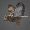 03 19 04 586 owl 0003 4