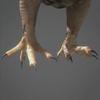 03 19 04 803 owl 0007 4