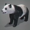 03 19 04 964 panda 03 4