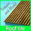 03 25 21 492 roof clean 1.jpg4ce0a952 0b32 46c3 8ff3 84d98f85a8e4larger 4