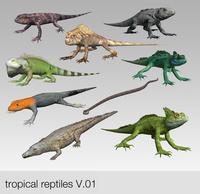 low poly tropical reptiles 3D Model