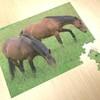 03 38 23 597 puzzle previews 6.jpg3dc303b4 f85f 44ce a2d1 e57346419e89larger 4