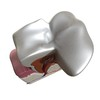 03 38 55 162 tooth   plaque preview 6.jpge6df2750 33bd 47d9 8da2 b955c0a163a9larger 4