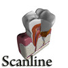 03 38 55 767 tooth   plaque preview scanline 13 copia.jpg71ecb6ef 0ece 46e0 b5fd e23570d62530larger 4