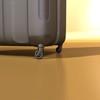 03 44 15 510 suitcase01 preview 07.jpg6aafc5b8 0437 419f bda6 19a3b55a156dlarge 4