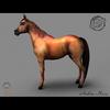 03 49 03 668 arabian horse render05 4