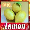 03 50 35 255 lemon preview 0.jpg0ee6f55a 564f 400a 9ce2 7d8718771f44large 4