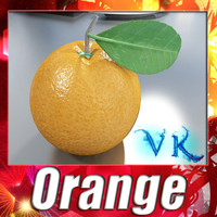 3D Model Orange High Detailed High resolution textures. 3D Model