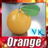 03 50 44 360 orange preview 0.jpgf35a23c6 5801 4094 8f0e 57489b7a35d0large 4