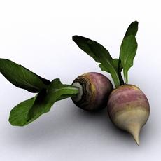 Turnip 3D Model