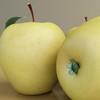 03 51 38 187 golden apple preview 06.jpg9532e723 e2f7 42ff 9429 5d0682c6f668large 4