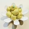 03 51 42 551 golden apple fruit basket 05 preview 03.jpg293d8f8c f569 45e9 94fa cf4935f1e1a2large 4