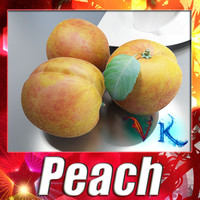 3D Model Photorealistic Peach High Resolution 3D Model