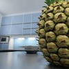 03 53 53 337 pineapple preview 04.jpgd3864870 5f29 4c7a 9ba2 7c2d76cbd9a7large 4