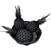 03 54 04 209 pineapple fruit basket 10 preview wire01.jpgdf5d56b5 ca35 4283 bd3c e6eb589e4788large 4