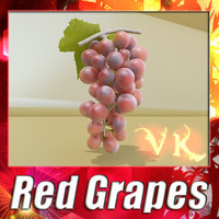 3D Model Red Grapes High Detail 3D Model