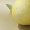 03 54 25 681 melon preview 05.jpg1d7e134b 507a 4f87 8147 750c12dd9819large 4