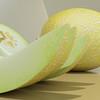 03 54 26 7 melon preview 04.jpg00798dd2 8806 4527 8f92 5337bca401bblarge 4