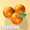 03 56 12 744 orange preview scanline 01.jpg2fedaee2 1c85 4ab3 828f 0ffd4693ecfflarge 4