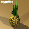 03 56 23 422 pineapple preview scanline .jpg82a40b41 fdf5 4e95 8f01 62305b33541blarge 4