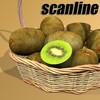 03 57 57 23 kiwi basket preview scanliner.jpgbc5bccb3 4de4 45cf 92da de49e1fa1b39large 4