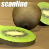 03 57 58 200 kiwi preview scanline 2.jpgea42157e 28a9 454e 9693 f70194ce5c5blarge 4