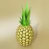 03 58 01 158 pineapple preview 06.jpg48d7231e 0097 452b 9564 8d69e2e74631large 4