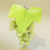 03 58 07 660 green grapes preview 06.jpg5216c12d 4c7b 4b44 a819 1594db538184large 4