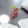 03 58 09 327 red grapes preview 03.jpg07429962 e1d1 4a81 bec8 c51cd5df2c10large 4