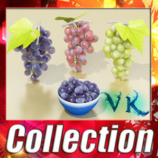 3D Model Grapes Collection High Detailed 3D Model
