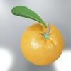 03 58 20 457 orange preview 02.jpg297cb98c 7557 4977 a18f 21068384d0balarge 4