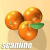 03 58 20 639 orange preview scanline 01.jpge301fcf6 de2f 4f12 8cb0 b4e82a528bfalarge 4