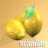 03 58 39 302 lemon preview 07 scanline.jpg64423cef 7d73 4b66 b036 2db6efb720celarge 4