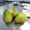 03 58 40 551 pear previews 01.jpgf0e75c1e c4a7 4c1d bd5a fff176cb2da8large 4