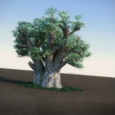 African Baobab LowPoly tree 3D Model