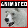 04 02 58 745 bear polar closeup 001 4
