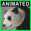 04 03 01 639 panda closeup 001 4