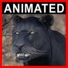 04 03 01 749 panther closeup 001 4