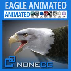 Animated Bald Eagle