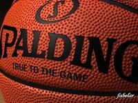 Basketball Spalding 3D Model