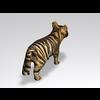 04 16 26 444 tiger3 4