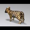 04 16 26 596 tiger4 4
