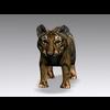 04 16 27 35 tiger7 4