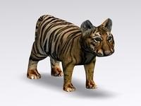 Baby Tiger 3D Model