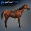 04 17 57 0 horse 11 4