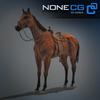 04 17 57 310 horse 08 4