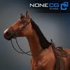 04 17 57 662 horse 06 4