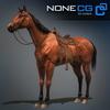 04 17 57 78 horse 10 4