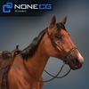 04 17 57 891 horse 05 4