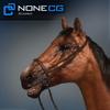 04 17 58 48 horse 04 4